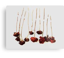 Ten Roses Metal Print