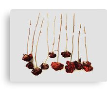 Ten Roses Canvas Print