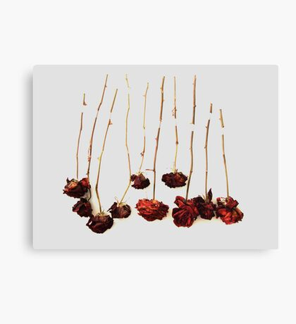 Ten Roses Canvas Print