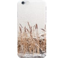 Typha reeds at frozen lake iPhone Case/Skin