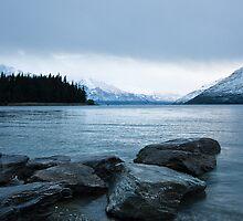 Lake Wakatipu by Thomas Young