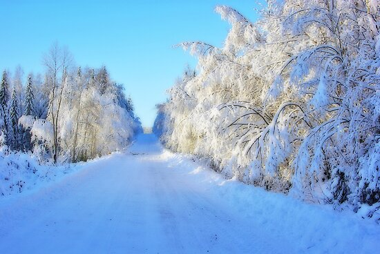 Winter Road #1 by MarianaEwa