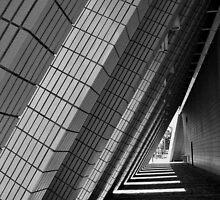 Shadow Play by Sylvia Wu