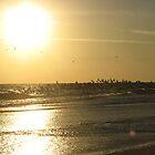 Daytona Beach Sun by ValeriesGallery
