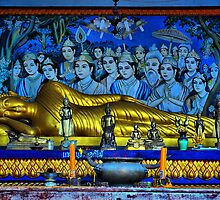 Buddha Reclining by sally williams