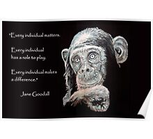 A Jane Goodall quote Poster