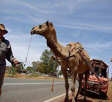 2 camel powered car by assh0le