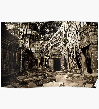 Tomb Raider (Ta Prohm, Siem Reap, Cambodia) Poster
