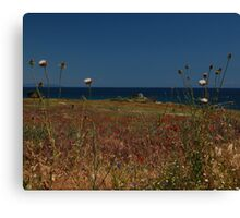 Distant Greek Church Canvas Print