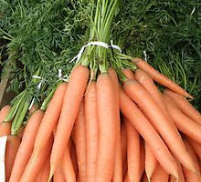 Fresh Carrots by Edward Denyer