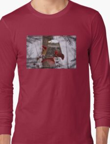 LET'S GET CRACKING Long Sleeve T-Shirt
