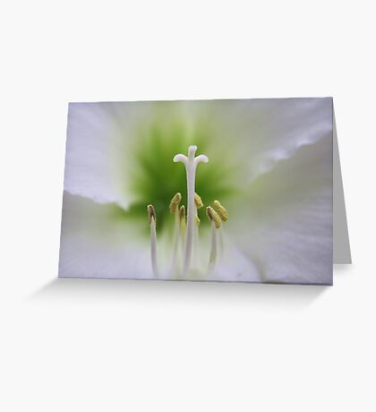 I am always with you! Greeting Card
