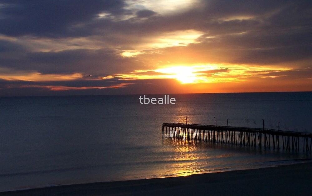 Hope on the Horizon by Terri~Lynn Bealle