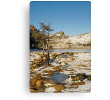 Across Blea Tarn - Lake District -  Cumbria Canvas Print