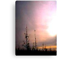 Across the Frozen Swamp Canvas Print