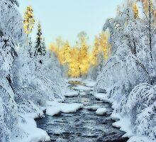 Wintery Stream by MarianaEwa