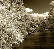 Fall On Little River  by Gary L   Suddath