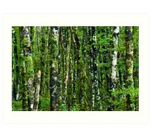 green forest background Art Print