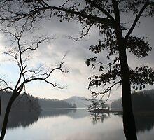 Morning On Lake Glenville, North Carolina by Karen Kaleta