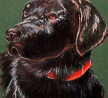 """King Charles""~ Portrait Of A Black Lab by Susan Bergstrom"