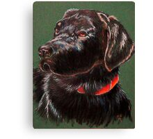 """King Charles""~ Portrait Of A Black Lab Canvas Print"