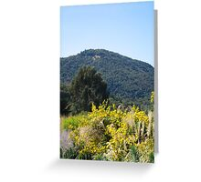 Sonoma California Vineyard Grounds Greeting Card