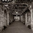 Alamo Walkway by kerplunk