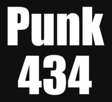 WWE CM Punk - 434 Day Title Reign by TheBlueOwl