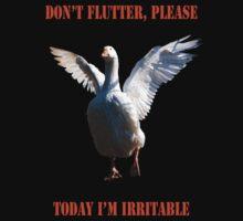 Don't flutter please... by Monica Di Carlo