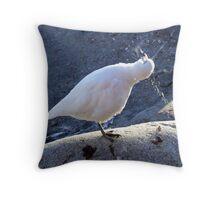 Snowy Sheathbill Throw Pillow