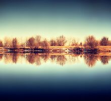 Quiet Mind by Solefield