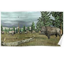Mountain Buffalo Poster