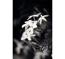 Untitled 6.0 Photographic Print