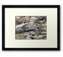 Battlefield of the Giants Framed Print