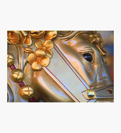 Golden Horse Photographic Print