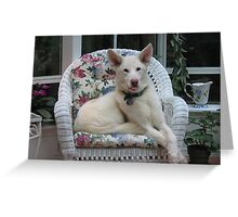 The Queen on Her Throne Greeting Card