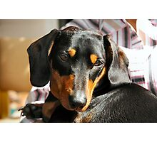 m&d Cooper May Photographic Print
