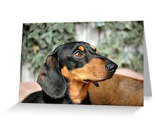 m&d Cooper August Greeting Card