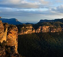 Boar's Head - Blue Mountains NSW by Dilshara Hill