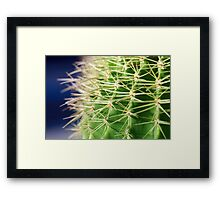 Spiky Framed Print