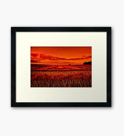 """""""Morning!! - After The Harvest"""" Framed Print"""
