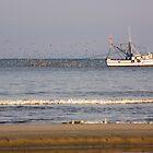 Shrimp Boat by Susan Gottberg