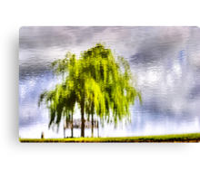 Pond Willow Canvas Print