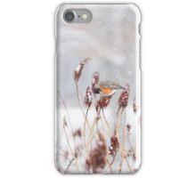 Robins in Winter1 iPhone Case/Skin