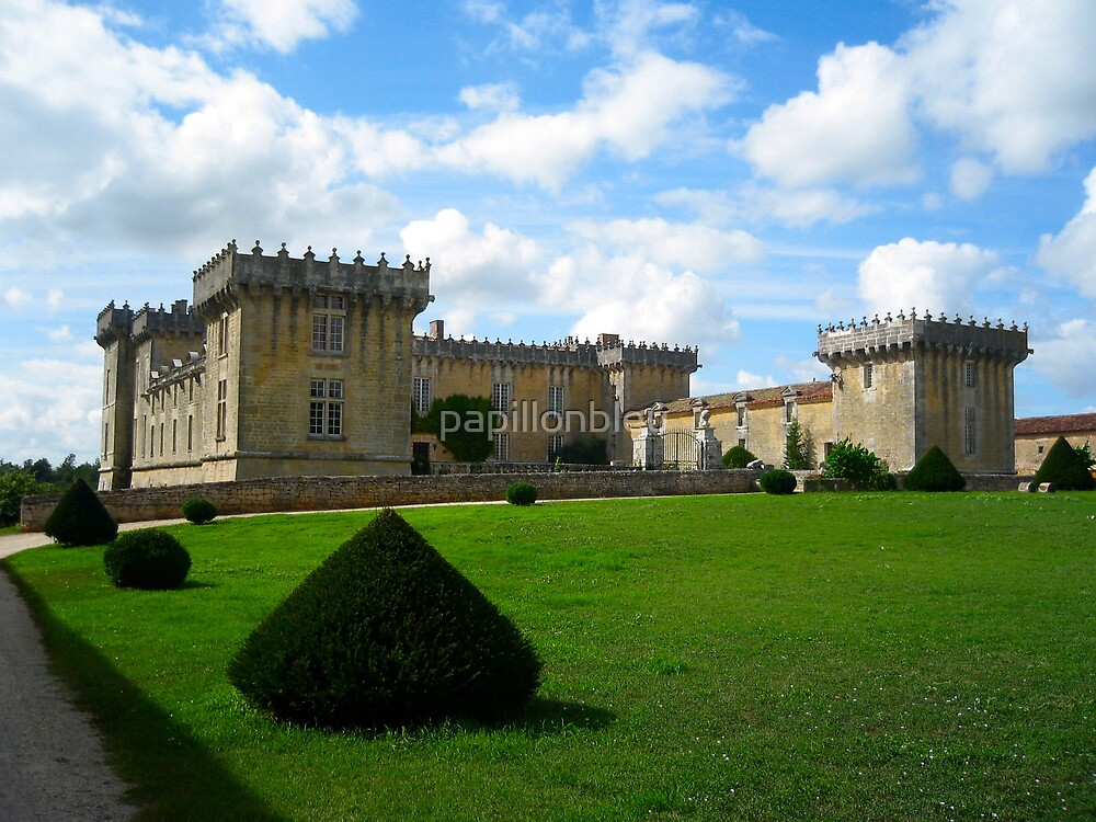 Castle in Cognac by Pamela Jayne Smith