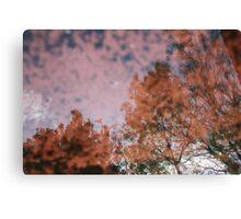 Ceramic trees Canvas Print