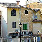 A Corner Of Soller..................................Majorca by Fara