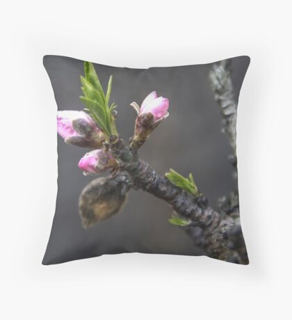 Peach Buds Throw Pillow