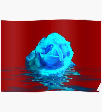 Rose #5 Poster