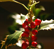 The Holly and the Ivy by DiEtte Henderson